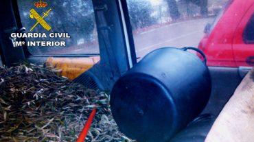 Detenidas cinco personas por el robo de 15 toneladas de aceituna en Loja