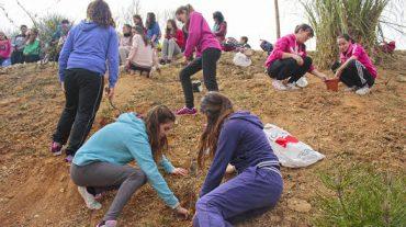 Adolescentes de Huétor Tájar plantan 120 árboles