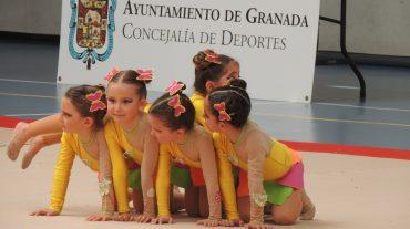 Casi 600 gimnastas de 37 entidades participan en los Juegos Deportivos