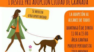 Granada acoge el I Desfile Pro Adopción