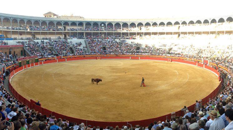 La plaza de toros de Granada se quedará pequeña para el festejo de este jueves. Foto: L. F. R.
