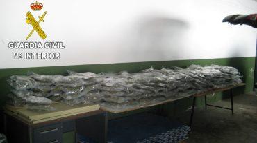 Detenido al ser sorprendido circulando por la A-92N con 64 kilos de marihuana