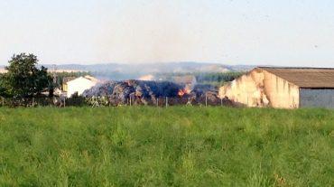 Un incendio en Fuente Vaqueros quema la alpaca de una cooperativa