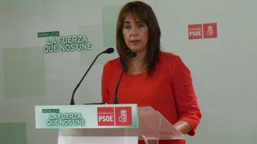 """El PSOE alerta de la pérdida de visitas del Museo Casa Natal de Lorca por el """"abandono"""" de Diputación"""