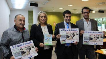 La VII Real Feria del Ganado de Loja apuesta por la recuperación de la raza ovina autóctona