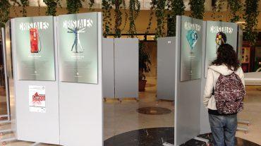 La Fundación Descubre exhibe su nueva exposición de Cristalografía en la UGR