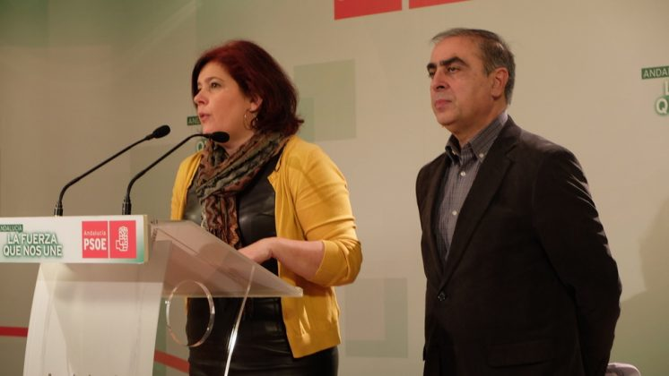 Los diputados Elvira Ramón y José Martínez Olmos durante su comparecencia. Foto: aG