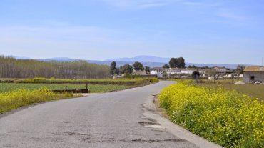 Pinos Puente pide lainclusión en la Red Provincial deCarreteras el camino vecinal que daacceso a la A-92