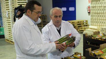 El PSOE promoverá la modernización del sector agrario y destinará más fondos autonómicos