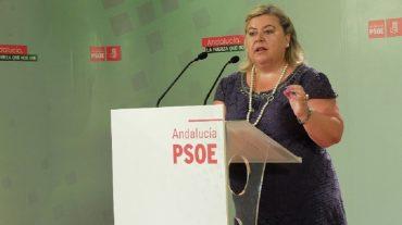 El PSOE pedirá en la Eurocámara que se promueva la ampliación de la superficie de agricultura ecológica