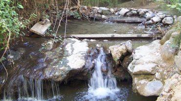 IU presenta alegaciones al proyecto del río Darro