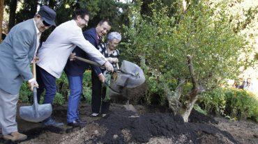 Cerca de 200 mayores de Granada celebran su Día con el plantado de un árbol en los Jardines del Generalife