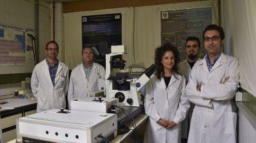 Un nuevo método no invasivo permite diagnosticar de manera precoz enfermedades como la osteoporosis o el Alzheimer