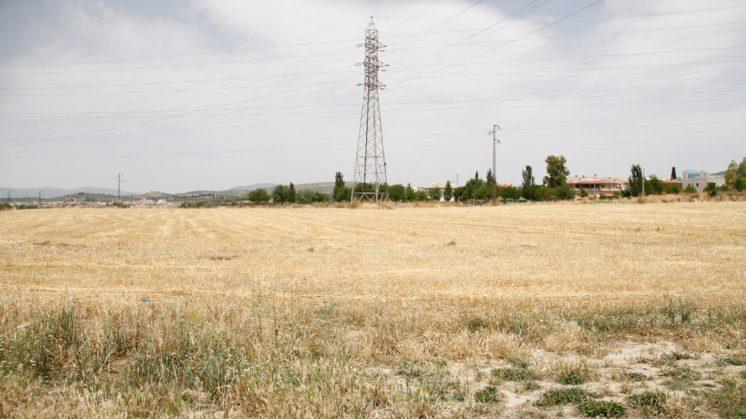 Los terrenos donde debía ir construida la nueva tienda de Ikea en Granada. Foto: Álex Cámara (archivo)