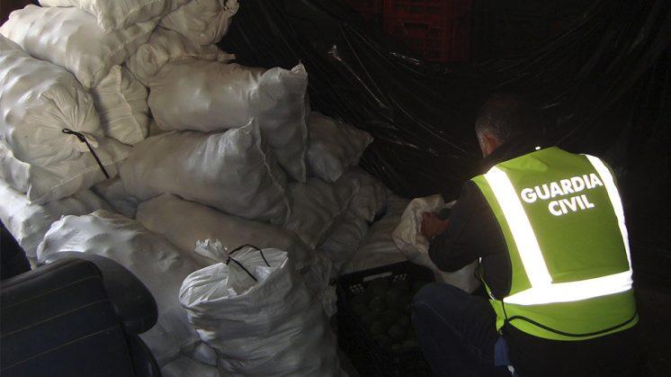 En la operación se han recuperado 1.500 kilogramos que habían sido sustraídos en una finca del paraje La Garnatilla, del término de Motril. Foto: Guardia Civil
