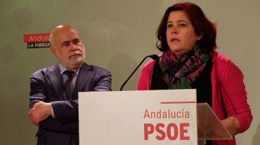 """El PSOE defenderá """"la voz de los granadinos en las Cortes frente a la marginación y desigualdad impuestas por el PP"""""""