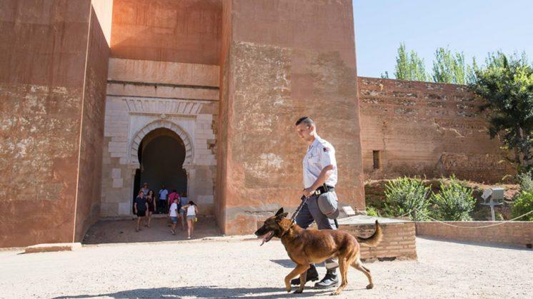 Uno de los integrantes del servicio de seguridad, con uno de los nuevos 'vigilantes' del monumento. Foto: Patronato de la Alhambra / aG