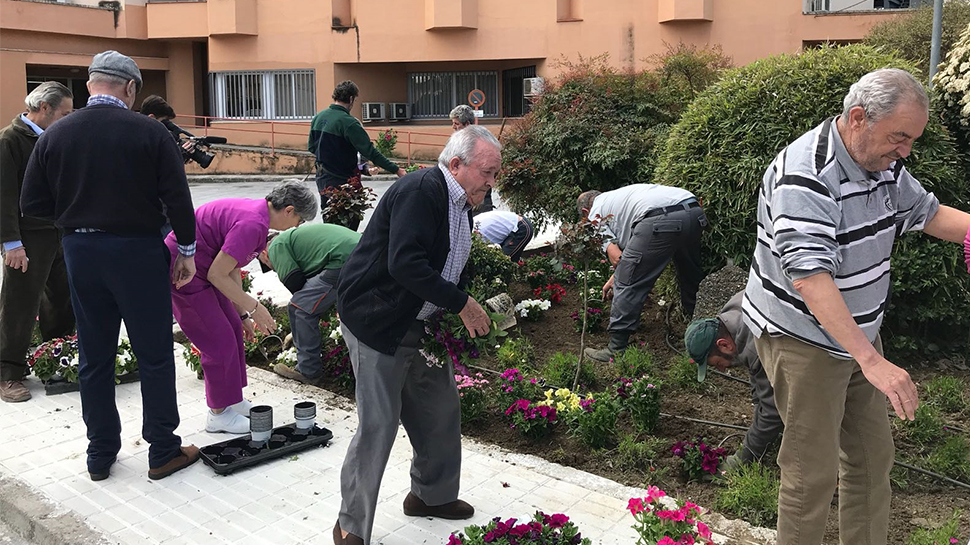 Ahora granada mayores de la residencia de armilla renuevan la imagen de sus jardines para - Residencia los jardines granada ...